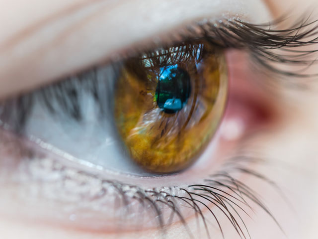 Dr's Slazus Ophthalmologists | How the eye works